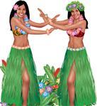 Hawaii Partisi
