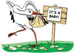 Leylek Getirdi Bebek Partisi