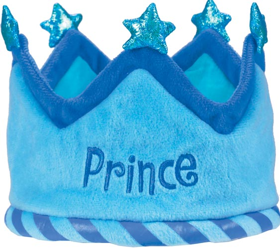 precious family princes birthday - 563×500