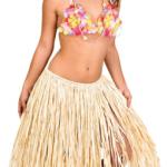 Hawaii partileri