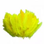 15 adet sarı kuş tüyü